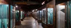 Час в музее: боевые топоры, шотландские палаши, двуручные мечи, алебарды и прочая железная классика средневековья
